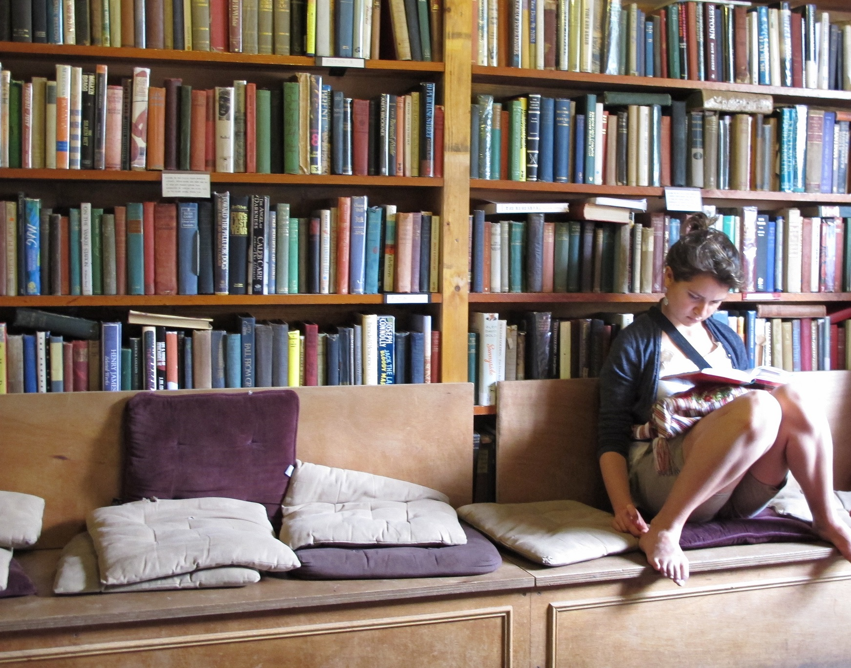 Reading Literature (cropped)